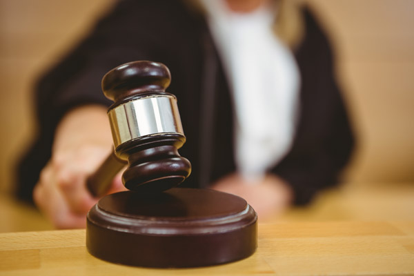 Pro Se Litigation: What and Why